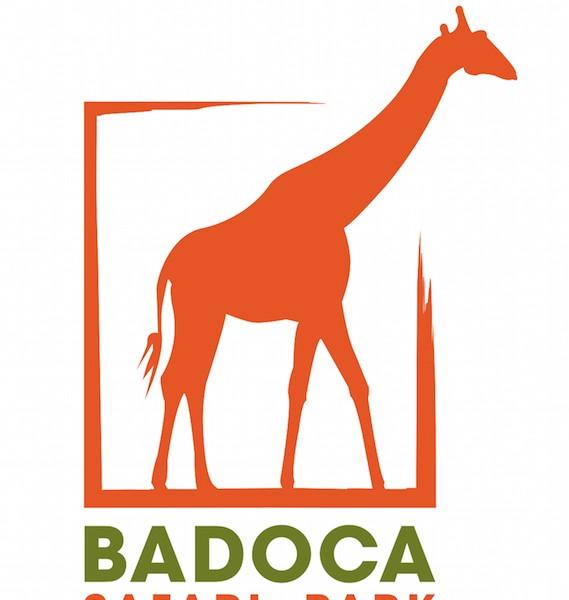 Aventura-te no Badoca Safari Park!