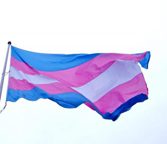 Trans. Ainda não é hoje que a autodeterminação chega